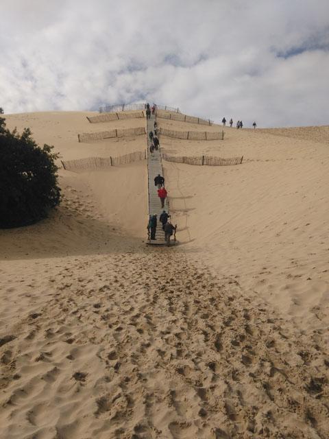 visite-la-dune-du-pilat-13